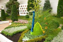 Podzimní výstava s růžemi ve stylu francouzských zahrad / Tradiční podzimní výstava u Starkla zahradníka je ideálním výletem pro celou rodinu. Kromě nevšedních květinových aranží a zahradních dekorací pro Vás bude připravena i speciální expozice těch nejúžasnějších růží.