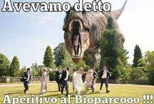 Wedding funny pics :) / Funny pics