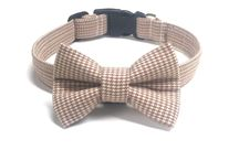 dog collar and bow tie! Perfect for weddings! dinocollars.com