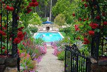 bahçe...