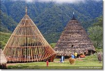 Rumah Traditional
