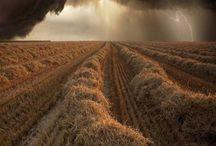 I love a Storm