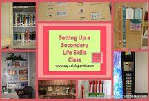 Middle School Life Skills Classroom / by Nicole Herring