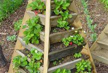 creatief / leuke ideeën voor huis en tuin