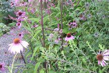 Pomysły ogrodowe - nieroślinne