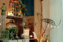 arrangement terrariums