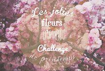 Challenge de printemps avril 2014 / des fleurs et des fleurs pour célébrer l'arrivée du printemps ! Photos prises au Jardin des Plantes, à Paris  © Faraboule 2014 / by Faraboule Bijoux
