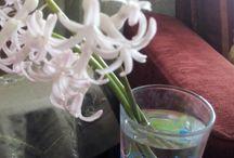 el işleri ve çiçek