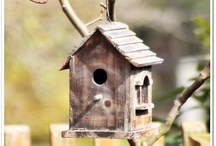 birdhouses / by Kathy Shay-Shapiro
