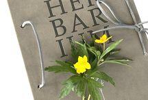 HERBARIUM / artist book