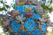 succulents / by Diane Frisco