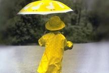 regnevær