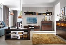 Modern Living / Ideas For Arranging Your Modern Apartment   Elegant,  Simple, Functional.