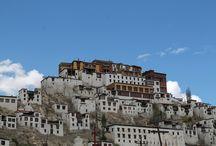 Voyage Inde: Ladakh : magie sur le toit du monde