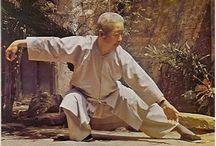 Kung-Fu & Tai Chi