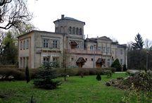 Wielgie - Pałac