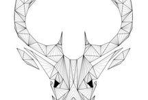 deer/antlers/stag
