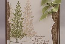 pinetrgreen