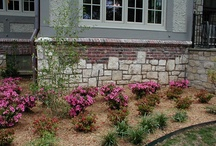 Landscaping / by Susie Johnson