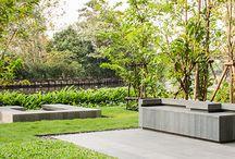 Garden / Ideas for back yards
