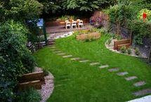 Green House: The Backyard