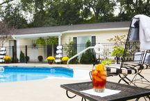 Great Poolside Ideas / Enjoy the pool at the Antebellum Inn Bed & Breakfast during your next visit to Milledgeville. www.antebelluminn.com