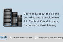 Online Database Training