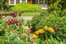 Destinos de Primavera / Lugares para ir na primavera, fotos de primavera inspiradoras. Parques, paisagens, jardins e flores em todo o mundo na primavera. By Adriana Lage