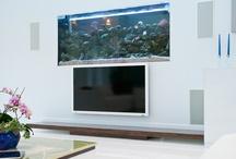 akvárium ötletek