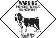 Cavalier King Charles Signs and Pictures / Warning and Caution Cavalier King Charles Signs. https://www.signswithanattitude.com/cavalier-king-charles-signs.html