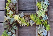 horizontale plantjes in letters