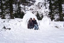 shimlatouroperators plan summer tourpackages / Summer tour packages Shimla and Manali top most destination. Tourist visit these peaceful and amazing places.