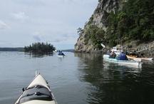 Yellow Island Kayaking / by Washington's Next Generation