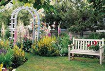 Gardens / by Darlene Propp