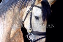 R.ROSMAN EQUINE ART / Horse  painter, equine art lover, #horse, #equine, #equinelover, ##andreasthomsen, #thomsen, #robertorosman, #rosman, #horsepainting, #fineart