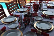 Family Christmas / 2014 Christmas with cousins @ the Visagies