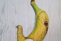 art des fruits
