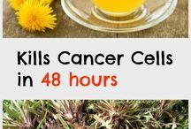 Cancer Dandelion tea (teraxaco)