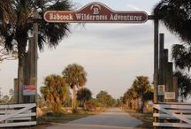 Attractions / Things to do in our area