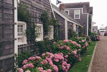 Shingle Style Homes Cape Cod