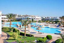 فندق جراند سيز هوست مارك, الغردقة بمصر / يبعد عن مطار الغردقة بحوالى 7 كم وعن جزيرة الجفتون بحوالى 15كم