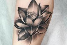 1- lotos