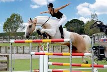 Extrem show jumping