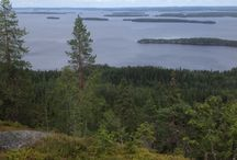 North Karelia Finland / Nature, wildlife, purity, silence,