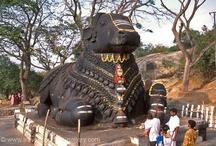 Travel - India memories
