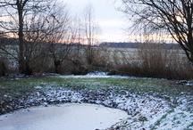 Väterchen Frost 12 | 2010 / Frostige Temperaturen in Jade – gibt es vielleicht sogar eine weiße Weihnacht? :-) Wir sind gespannt.