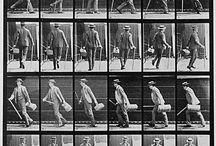 Mouvement la marche Muybridge
