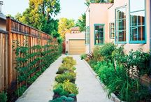 Garden / by Myriam Jean Baptiste