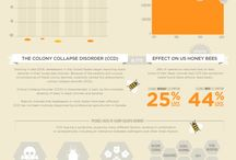 Bees bees bees / Beekeeping ideas / by Chrissy Tim Scott