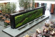 Architecture Green